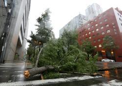 Las imágenes que dejó el tifón Jebi en Japón