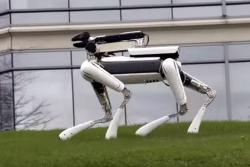 Conozca a SpotMini, el 'perro robot' del futuro