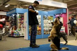 Comenzó la Feria Internacional de Animales de Compañía, Expopet 2016
