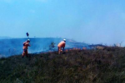 Se estima que 60 hectáreas de bosque seco se quemaron en Santander