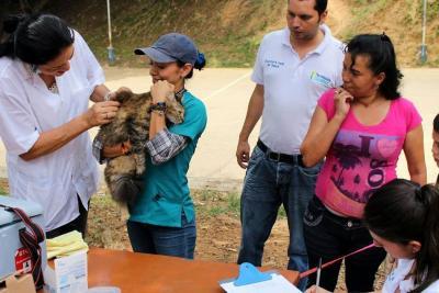 Jornada de vacunación gratuita irá a los barrios