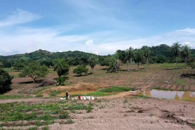 Implementan el riego por goteo en cultivos