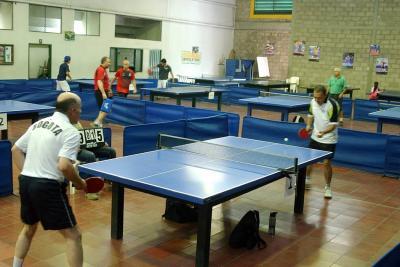 Maestros del tenis de mesa en acción