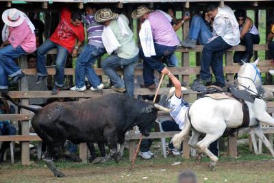 Hombre muere corneado por toro en corraleja en Atlántico