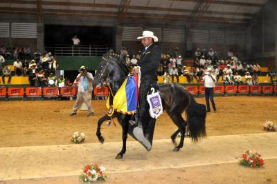 172 caballos fueron juzgados  en la exposición de Oiba
