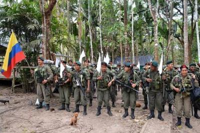 """""""Un 5% de las FARC en Colombia desertarán para dedicarse a la delincuencia"""": Mindefensa"""