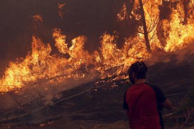 Evacuaron a unas cuatro mil  personas por incendio forestal en el sur de Chile