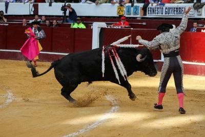 Así está el pulso en la Corte por las corridas de toros