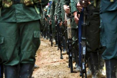 Ocuparon 277 mil hectáreas en poder de disidentes de las Farc