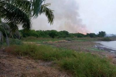 Incendio forestal en Puerto Wilches ha consumido alrededor de 100 hectáreas