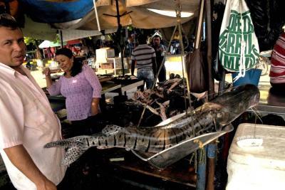 70 % aumentará el consumo de pescado el país en Semana Santa