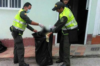 Indignación por la muerte de 24 mascotas en Norte de Santander