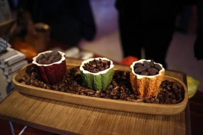 Producción de cacao creció 29 % en el primer trimestre de 2017