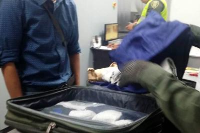 Cayó en el Aeropuerto Palonegro una 'mula' cargada con cocaína