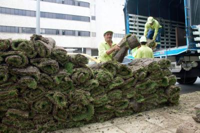 64 parques ha intervenido el Bucaramanga durante 2017