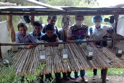 Estudiantes de Santander: de laboratorios de caña y zinc a principal feria de ciencia del mundo