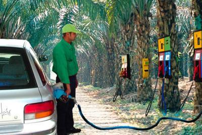 Autorizan importación de biodiésel; ya se podía traer etanol