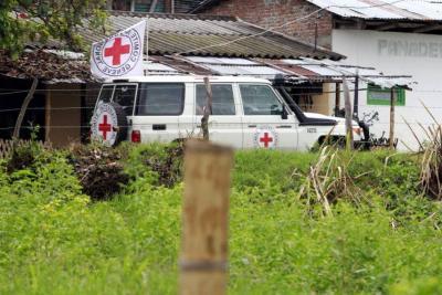 Al menos 10 menores de edad han decidido permanecer en campamentos de Farc