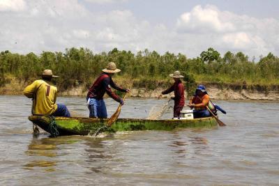 Fue aprobada creación del Consejo de Pesca Artesanal