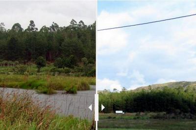 ¿Renacerá el único humedal del área metropolitana de Bucaramanga?