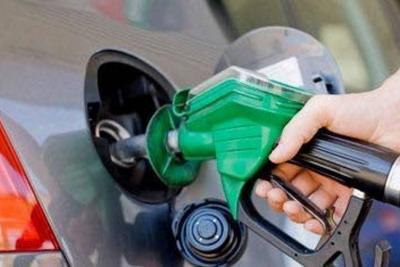Biodiésel podría atender demanda de biocombustible