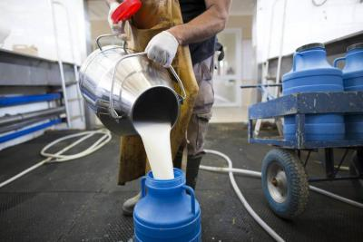 Importaciones de leche en polvo desde UE vuelven a reactivarse