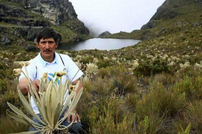 """""""Proyecto minero en Santurbán sigue en marcha"""": MinMinas"""