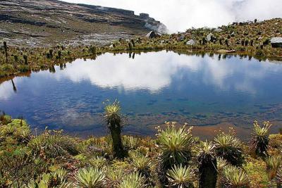 Procuraduría pidió a Unesco declarar los páramos como Patrimonio de la Humanidad