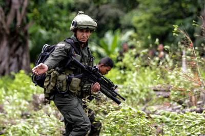 Erradicados más de 47.000 hectáreas de cultivos ilícitos por la Fuerza pública