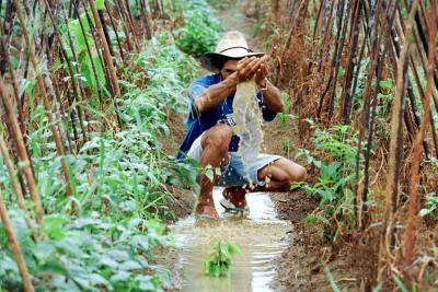 Hay 17 millones de hectáreas para riego