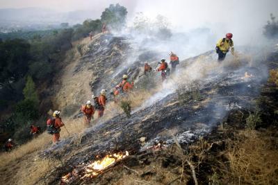Declararon estado de emergencia por los incendios en California