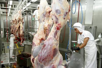 Chile y Rusia, mercados de carne objetivo de ganaderos