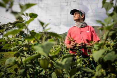 Estos campesinos se convirtieron en guardianes del medio ambiente en Santander