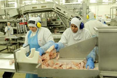 Sector avícola cierra el 2017 con un crecimiento del 6,4%