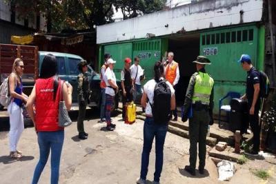 Control de gallinazos ya deja resultados en Bucaramanga