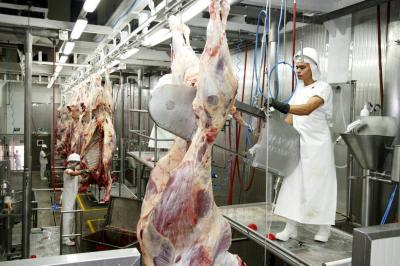 Curazao de nuevo abre mercado para carne colombiana