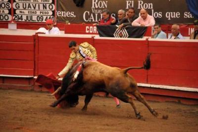 Encontraron muerto al torero colombiano Andrés de los Ríos