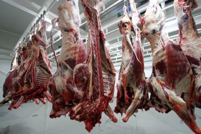 Jordania es el principal comprador de carne bovina con el 30,6%