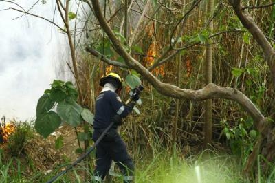 20 incendios forestales de gran proporción se han registrado en enero en Bucaramanga