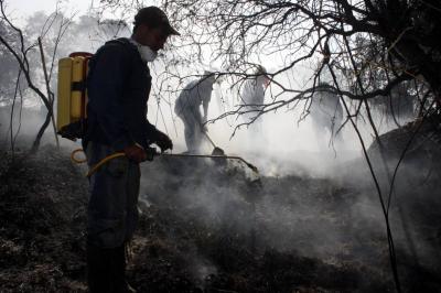 Alerta roja en 41 municipios de Santander por incendios forestales