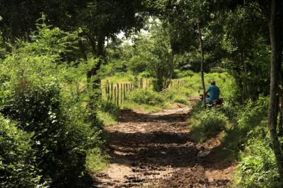 En Colombia se restituyeron 300.000 hectáreas de tierras