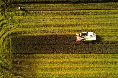 Banagrario realizará 16 Expoferias para promover tecnificación de agro