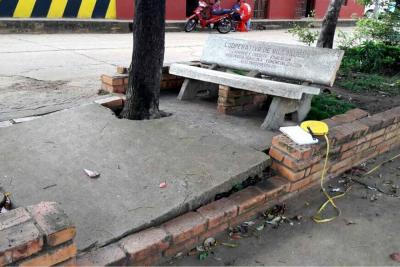 Suspenden provisionalmente la tala de árboles en Villanueva