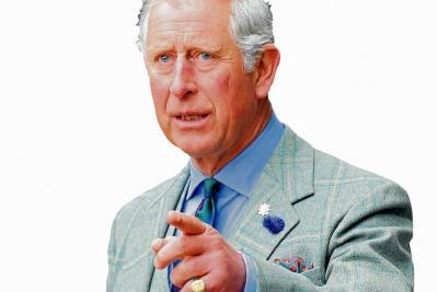 Según una biografía, el príncipe Carlos  es una persona maniática,  envidiosa y aficionada al lujo