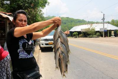 Pérdidas millonarias reportaron pescadores por derrame de crudo en Santander