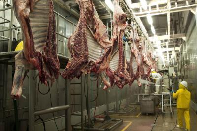 Riesgo de aftosa vuelve incierto negocio de carne