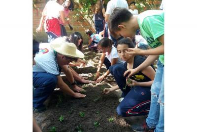 Colegio Nuevo Cambridge promueve huerta urbana en fundación infantil