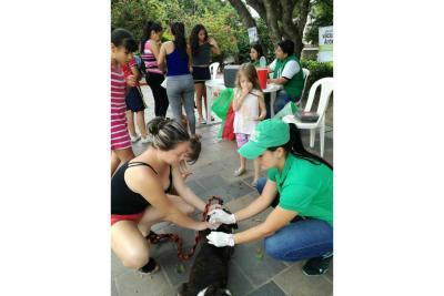 668 mascotas fueron vacunadas en varios barrios del municipio