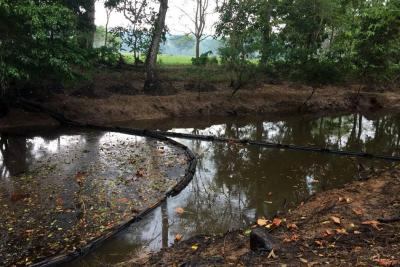 Recuperación de daño ambiental en La Lizama tardaría un año: ONU
