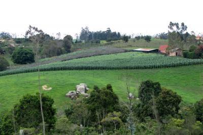 Abimgra, abonos orgánicos para una agricultura sana y sostenible